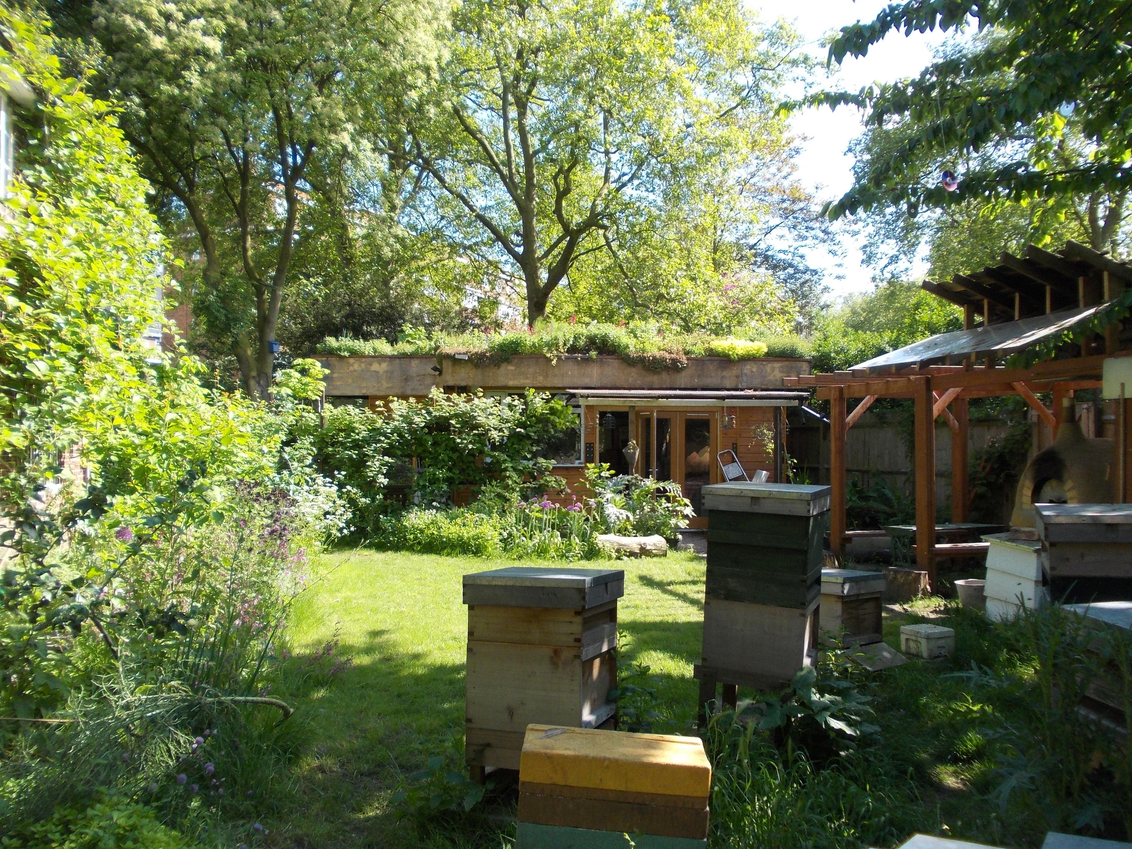Open Garden Squares Weekend, Bee Urban
