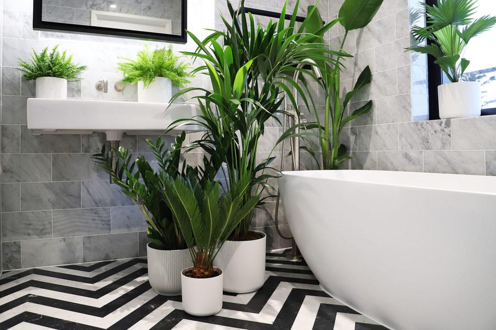 wardian bathroom with plants